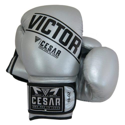 guantes de boxeo plateados